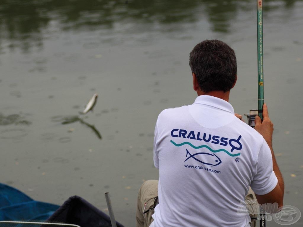 Akik szeretik a finomszerelékes horgászatot, azoknak hazánk folyóin is élménydús horgászatban lehet részük egy bolognai bottal
