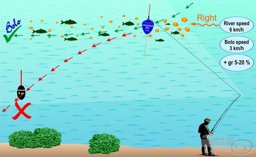 A Bolo úszó mozgását az alábbi ábra szemlélteti