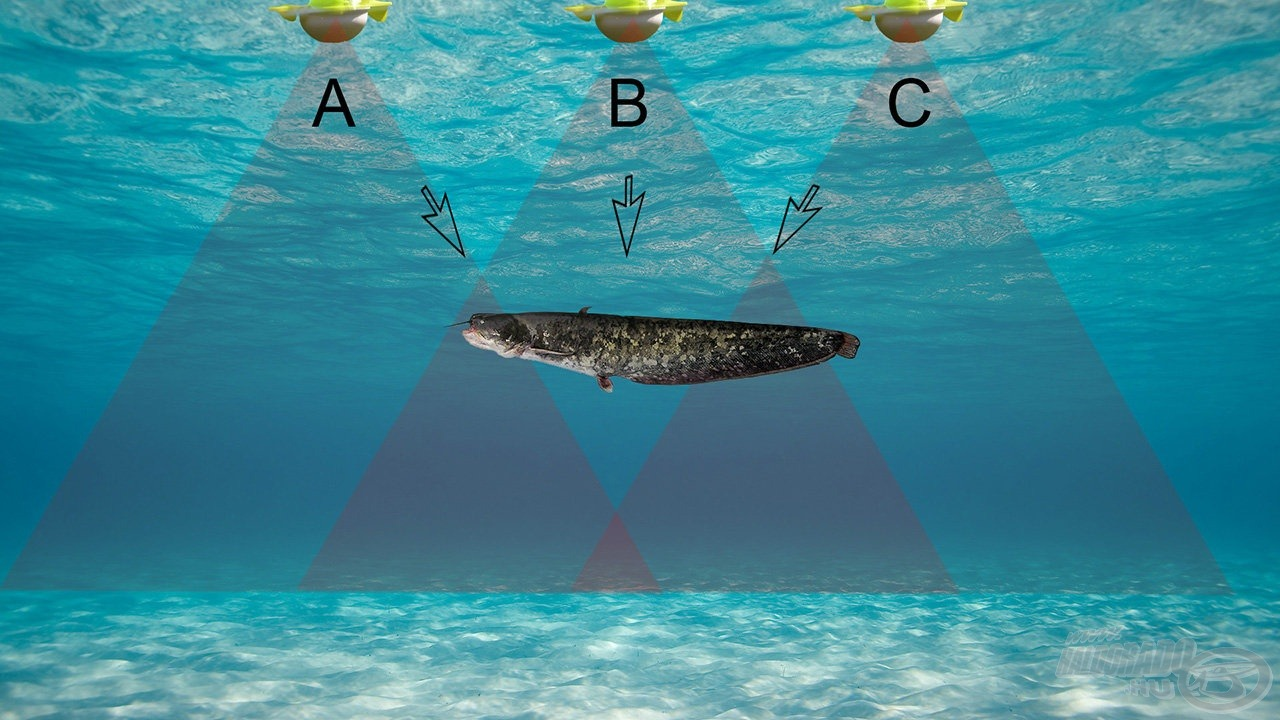 """Az """" A"""" jelű helyzetben a jeladó """"látószöge"""" szélén éppen csak """"látja"""" a halat és itt nagyobb a távolság is, ami gyenge és a vízoszlopban mélyebb helyen érzékelt jelet eredményez. A """"B""""jelű helyzetben már erős és közelebbi jelet látunk. A """"C"""" jelű helyzetben ismét gyenge és távolabbi a jel. Így alakul ki a radarok kijelzőjén a tipikus halsarló"""