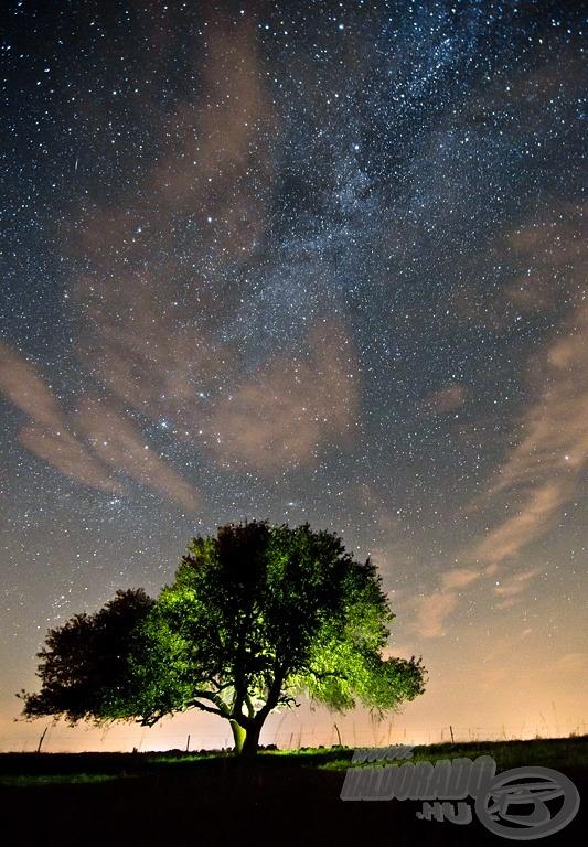Csillagok alatt