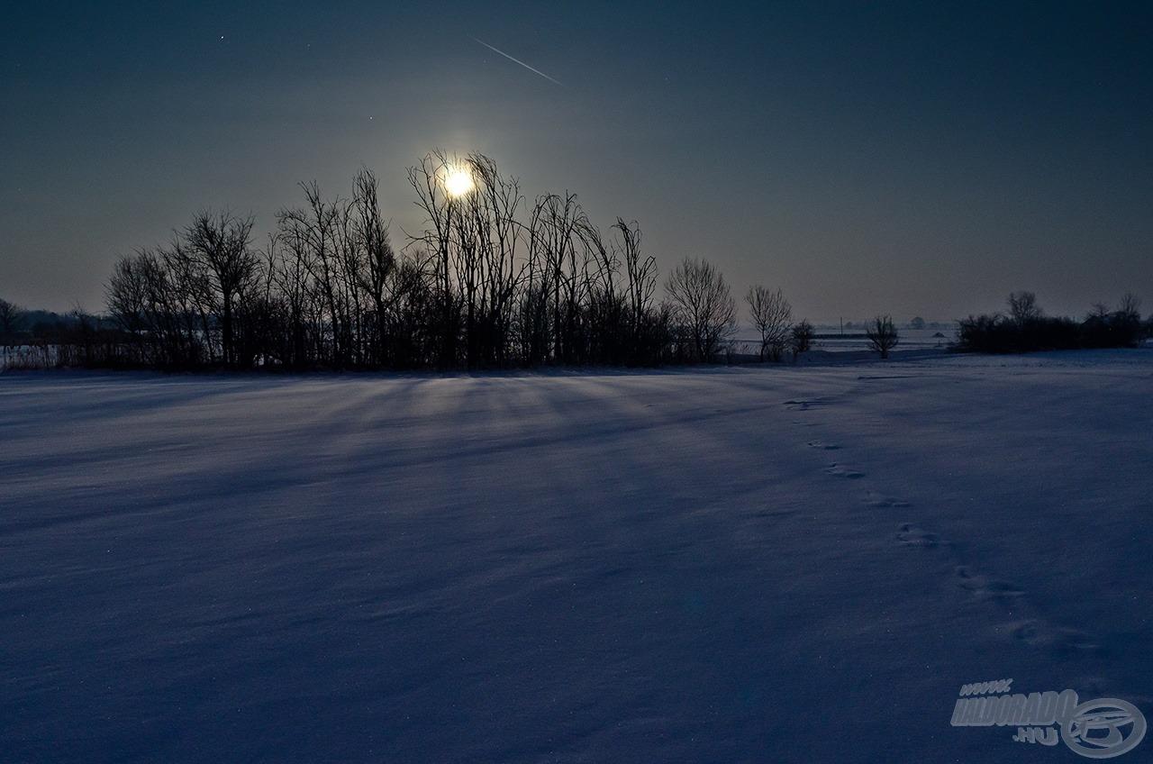 Holdfény árnyék