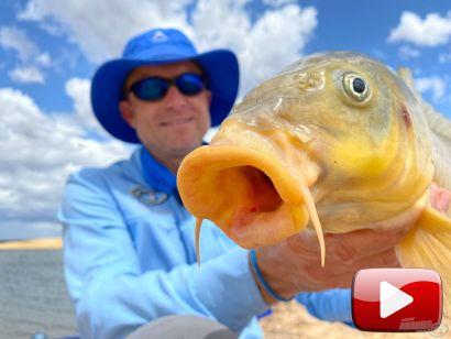 A Nagy Ausztrál Horgásztúra 3. rész – Horgászat az Eppalock-víztározón