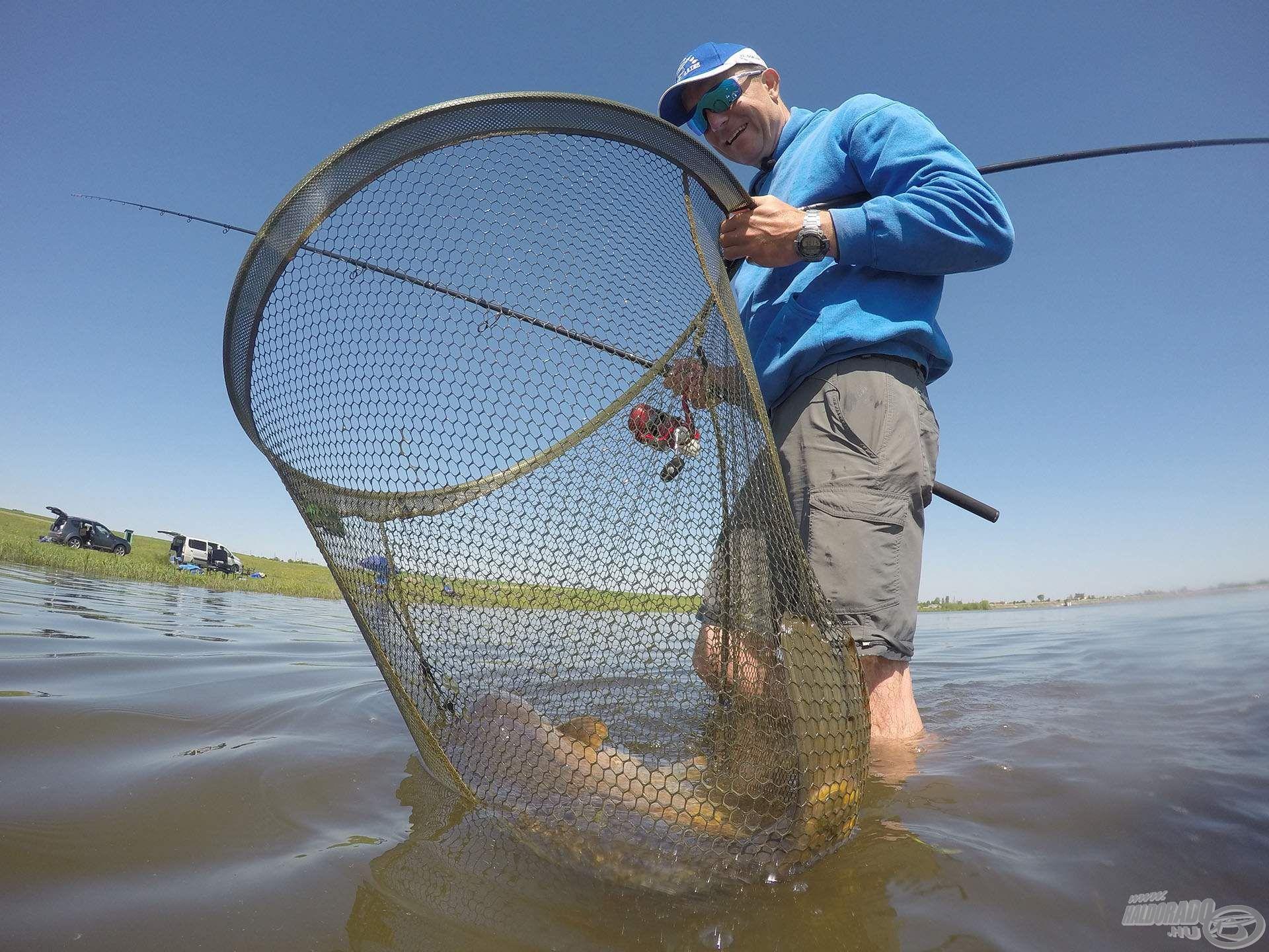 Tökéletes merítő fej nagyhalas feederhorgászathoz (is)