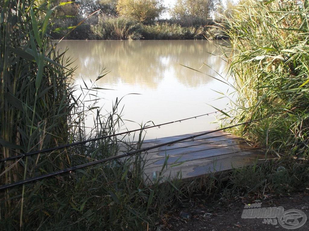 A horgászhelyemet egy viszonylag szűk nádnyiladékban alakítottam ki, amihez egy kis stég is tartozott