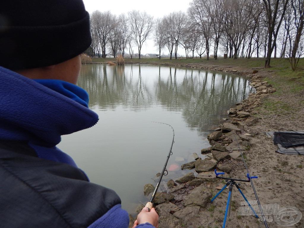 Ha mindent jól csináltunk, kezdődhet a fárasztás! A tokok nagyon jól küzdő halak, a hideg víz számukra kifejezetten kedvező