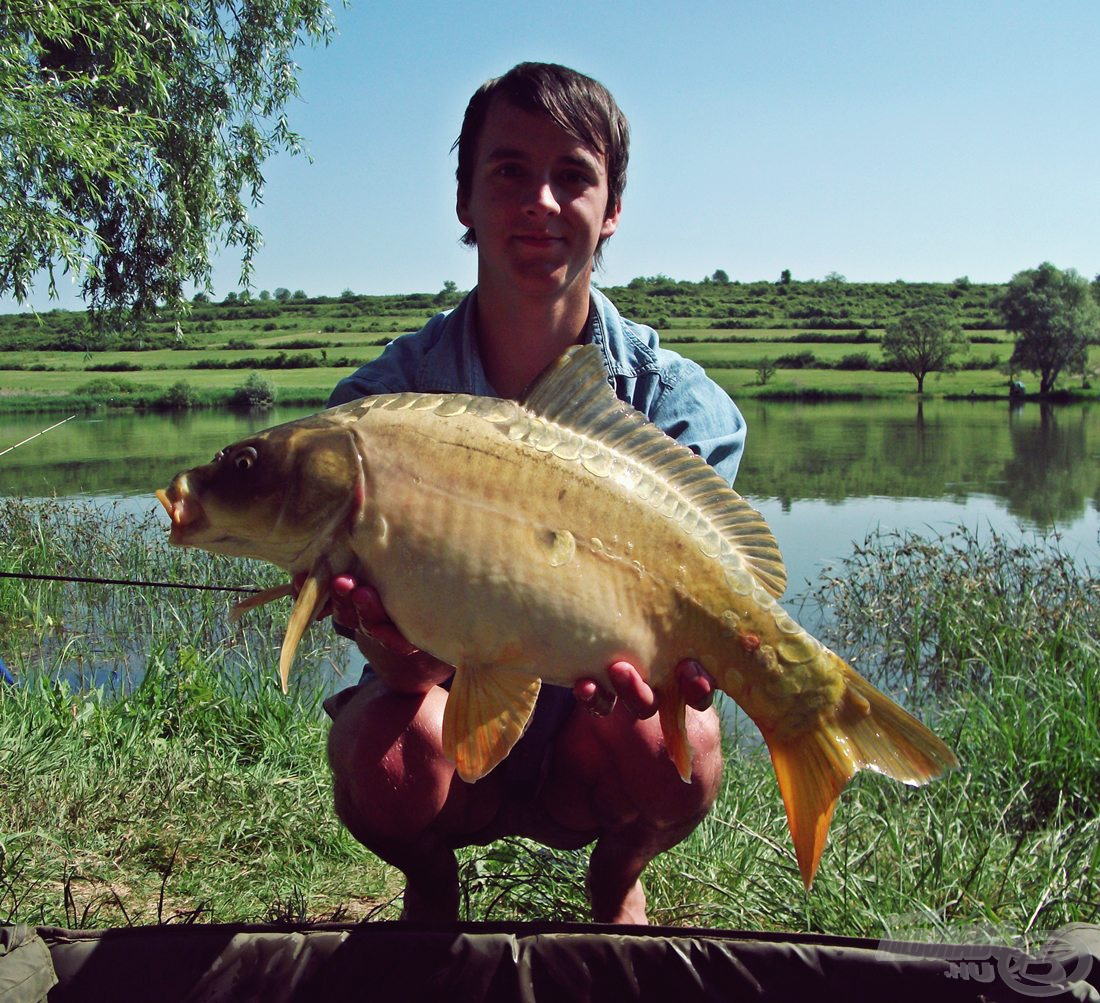 Gyönyörű, egészséges hal, ami kifejezetten egyedi, világos színnel rendelkezett (3,1 kg-ot nyomott :))