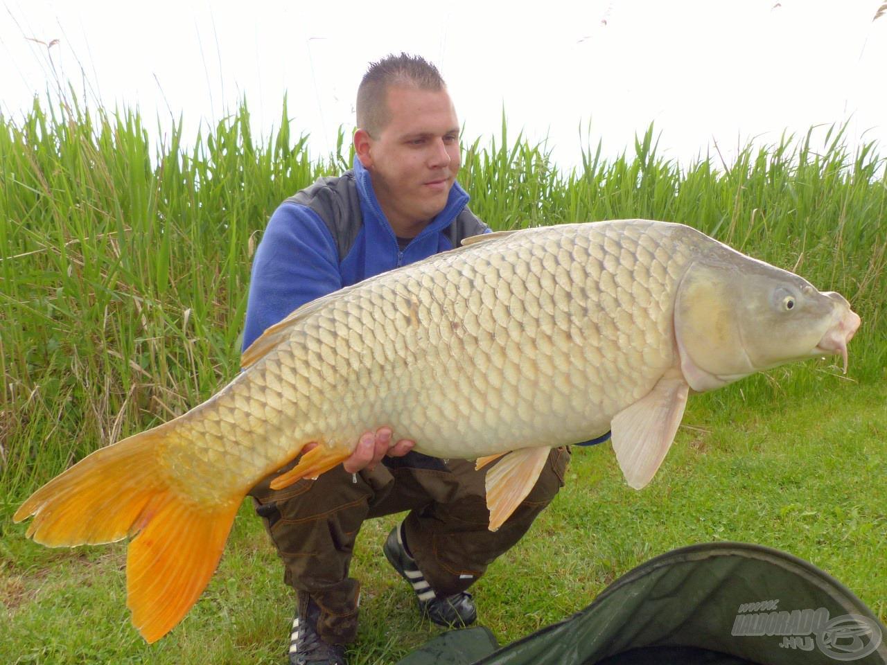 A horgászat koronáját jelentette ez a gyönyörű, 14,16 kg-os tőponty