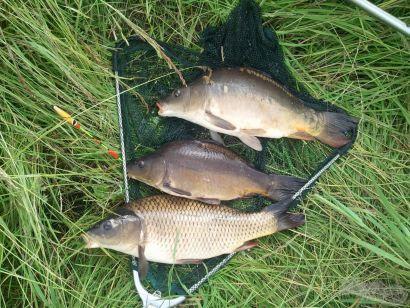 Aktív horgászat - avagy keresd a halat!