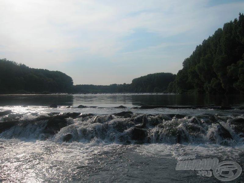 A vadregényes bősi Duna