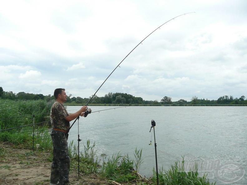 """A nagytestű halakat """"elfekvés"""" esetén ki kell mozdítani a helyükről"""