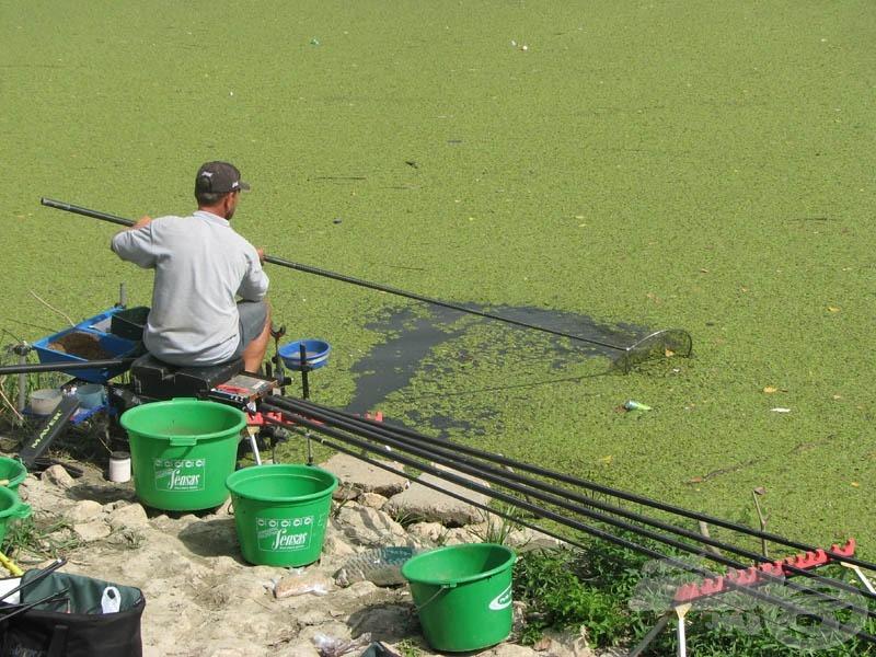 Néha hosszabb időre teljesen bezárult a zöld massza. Erdei Attila utána is nézett, milyen is a Tisza vize…