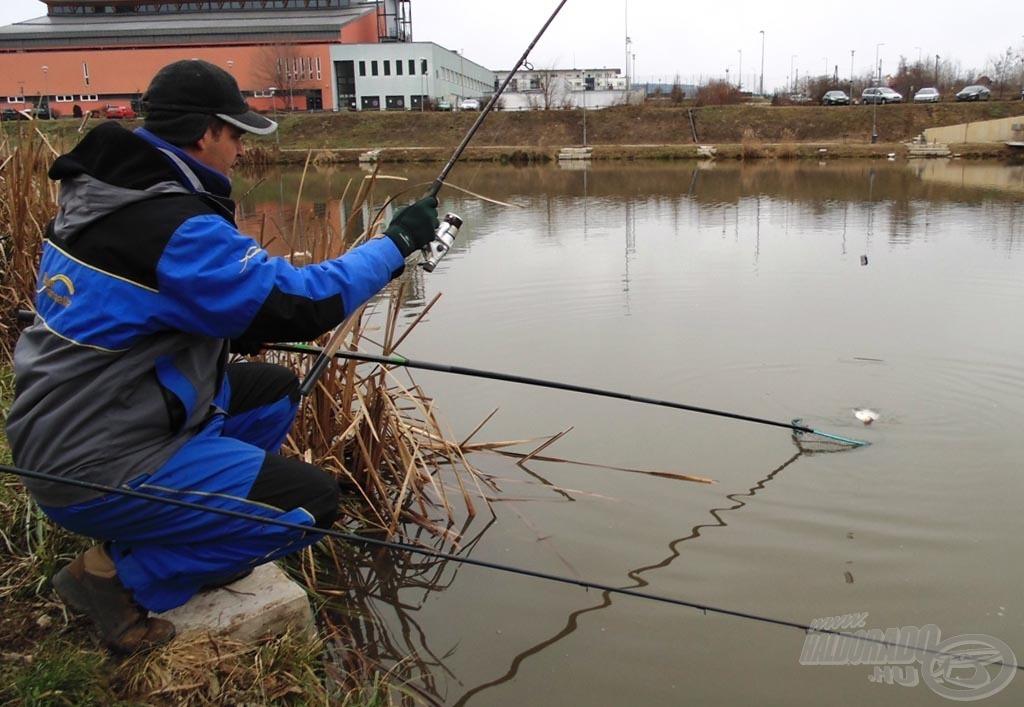 A hideg víz ellenére aktívak voltak a tó halai