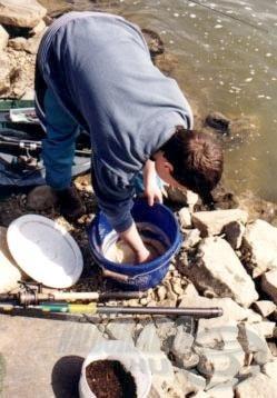 Fontos a megfelelő minőségű etetőanyag, mely a hideg vízben könnyen felkeltheti a kárászok figyelmét.