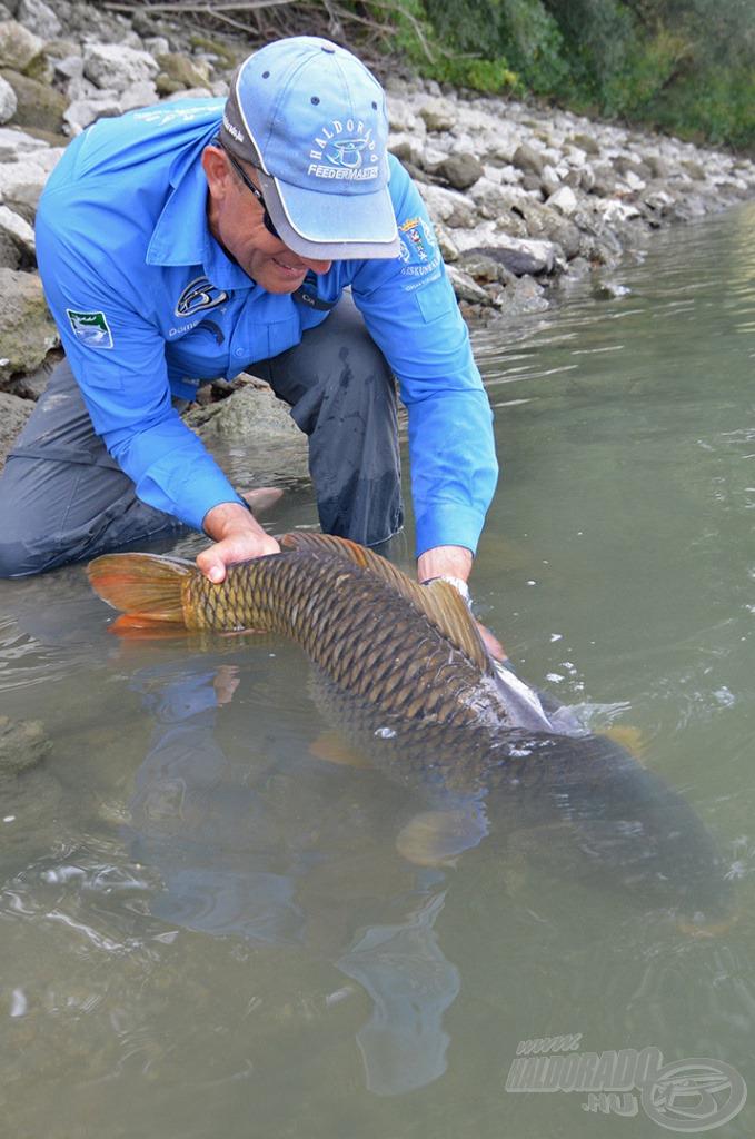 Csak így biztosítható az utánpótlás! A nagy halaknak ott a helyük, ahonnan fogtuk őket!!!