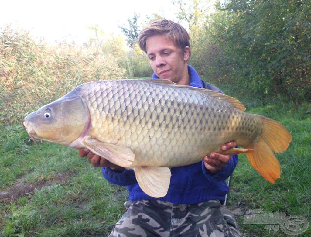 Gyönyörű tőpontyot tarthattam a kezeimben egy rövid időre. A hal pontos súlya kereken 10 kg!