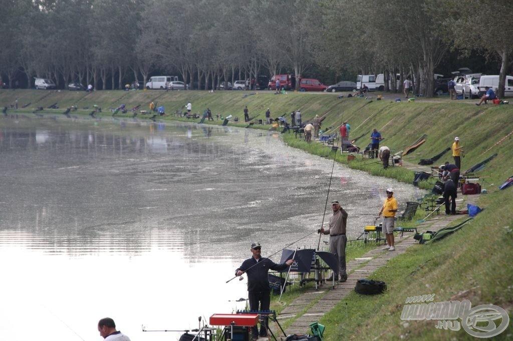 A MOHOSZ a horgászok, a halak és a vizek védelmében tevékenykedik, mindemellett a hazai versenysportot is patronálja