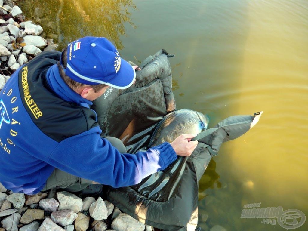 Egyre több vízen már kötelező az 5 kg-nál nagyobb halak visszaengedése