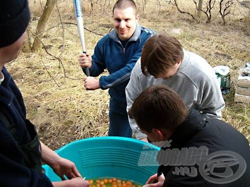 A tojásfeltörést Grass irányította és motiválta