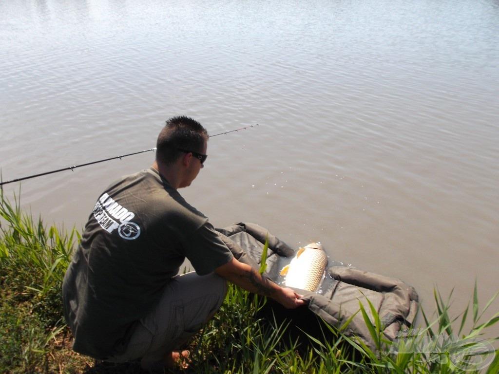 A halakkal való kíméletes bánásmód a legfontosabb egy horgászat során, számomra ez a legnagyobb élmény, mikor látom egészségesen elúszni