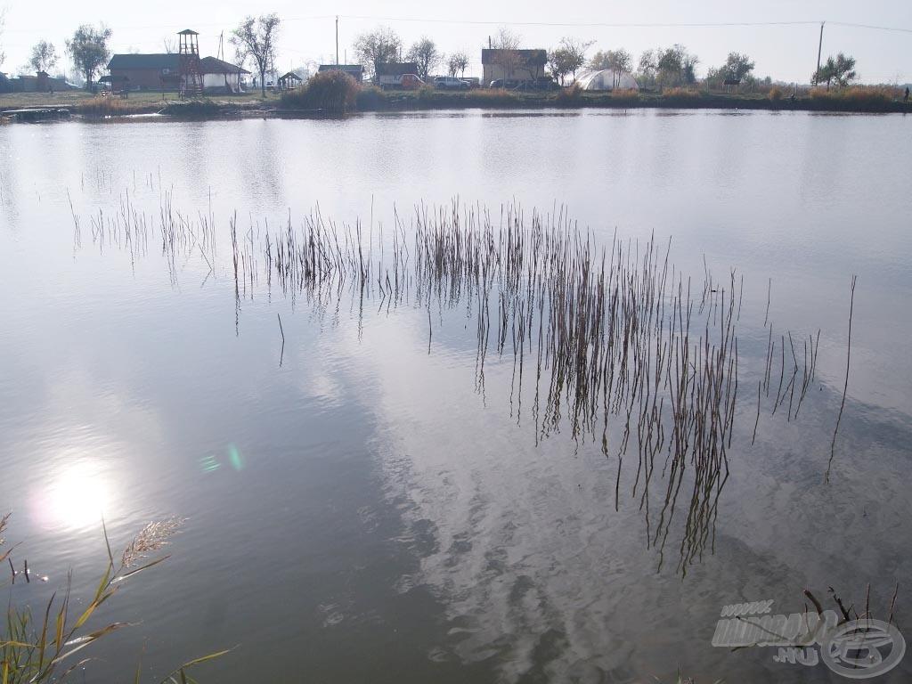 A vízben álló akadósor előtti terület ígéretes hely