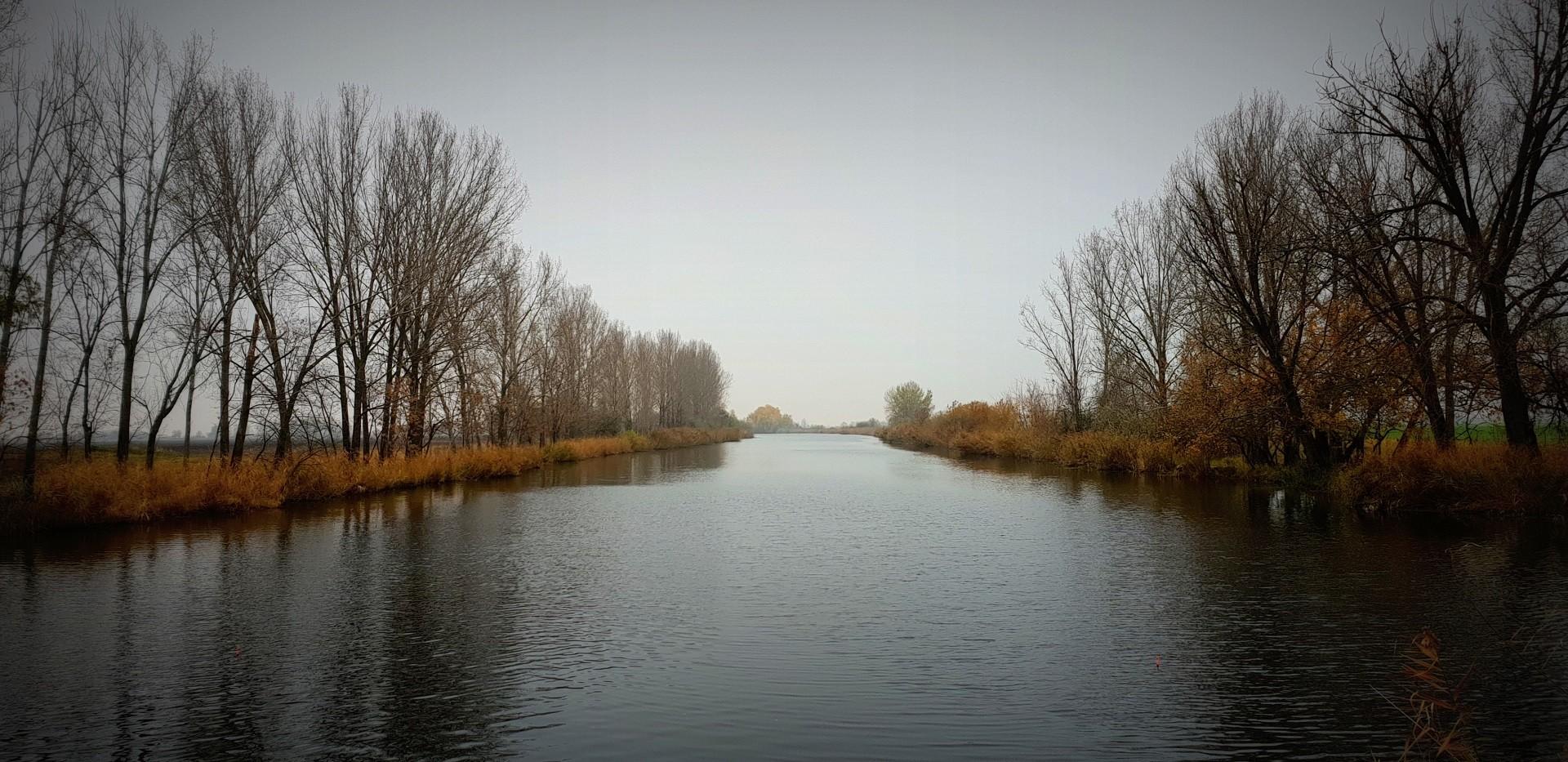 A csaknem 30 km hosszú V. számú csatorna kiváló életfeltételeket teremt az itt élő halak számára