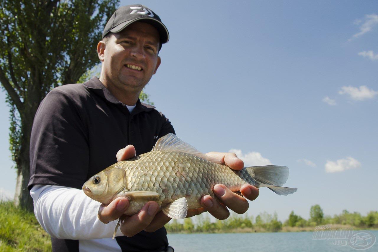 A Team Daiwa Feeder 12QX használatával minden hal fárasztása óriási élményt jelent, legyen az egy termetesebb kárász…