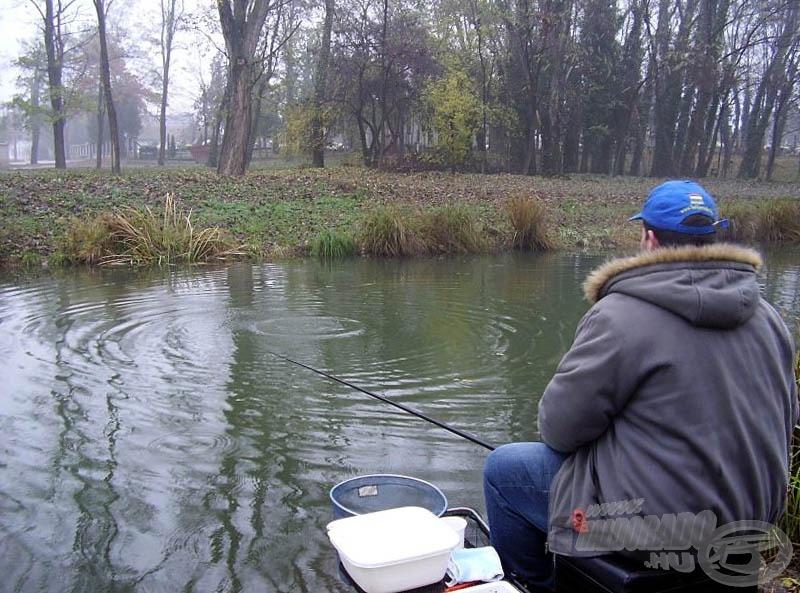 Ha ilyen közelre horgászunk, ülve is etethetünk