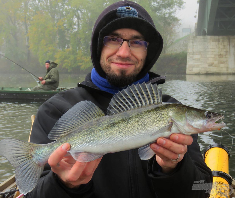 Ő még nem túl nagy, de egy intenzíven horgászott szakaszon már ezt a méretet sem könnyű becsapni