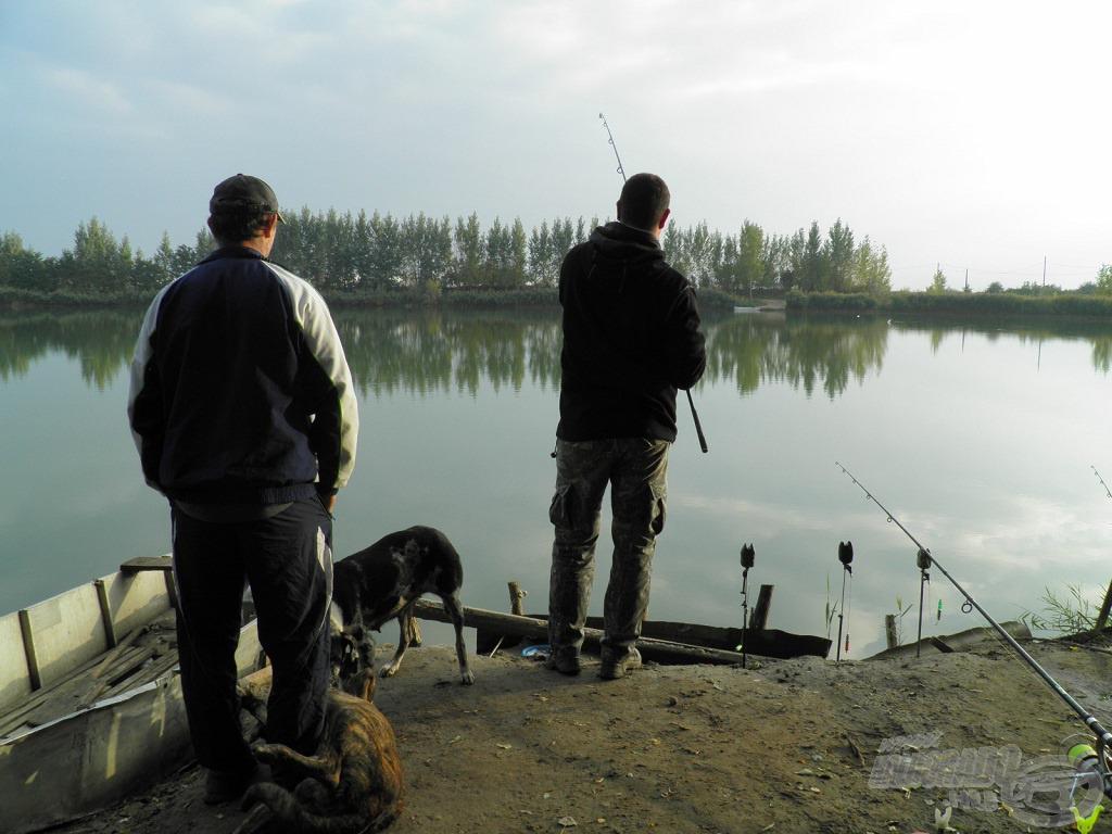 A tógazda és a tófelügyelők is támogattak fárasztás közben
