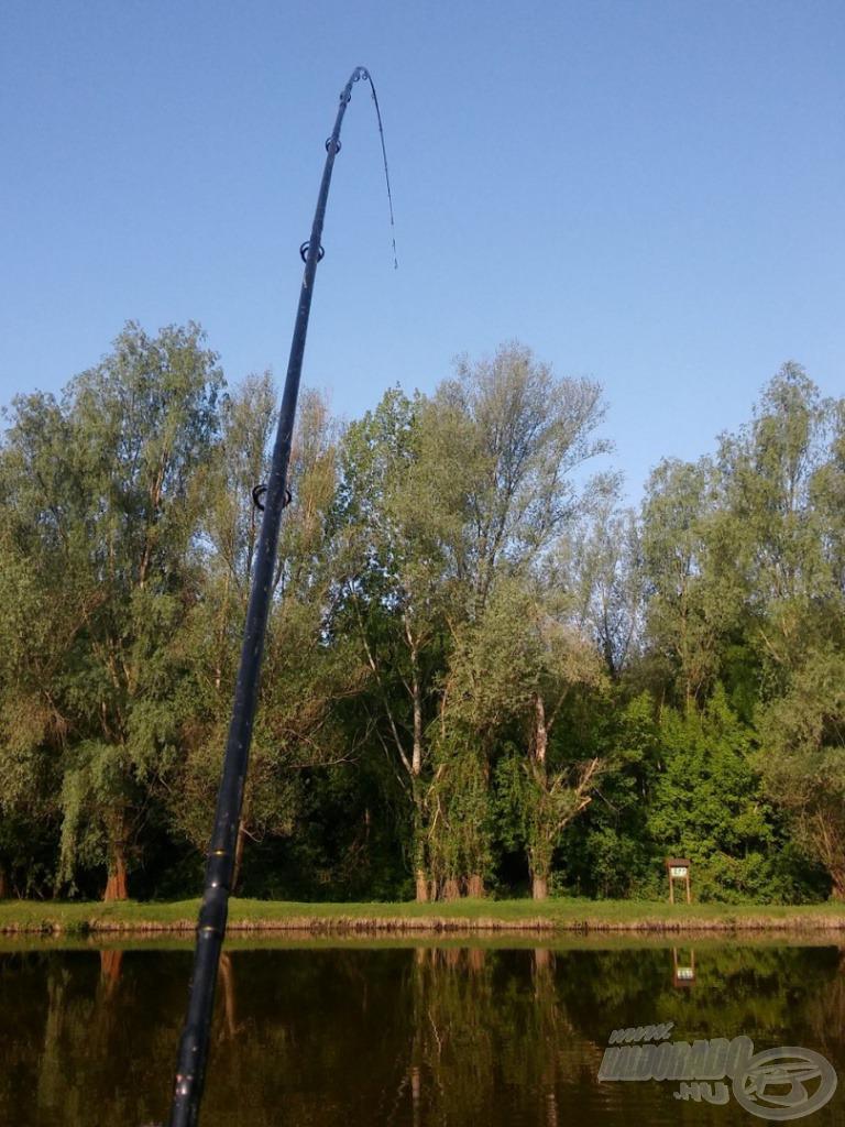 A SPRO Team Feeder - Master Carp by Döme Gábor 390 MH hű társam volt a hosszúra nyúlt horgászat során