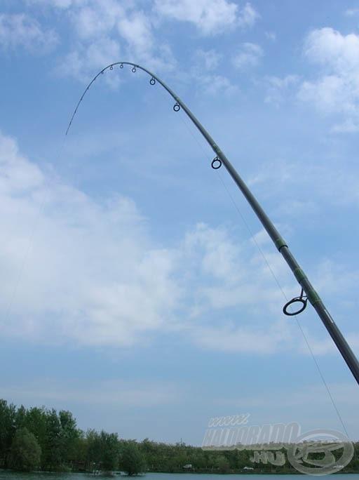 Fárasztja a halat rendesen a bot