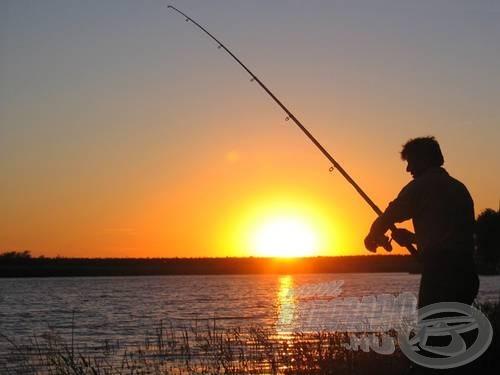 Külön élmény harcsázni a nyári alkonyatban (Csonoplyai-tó)