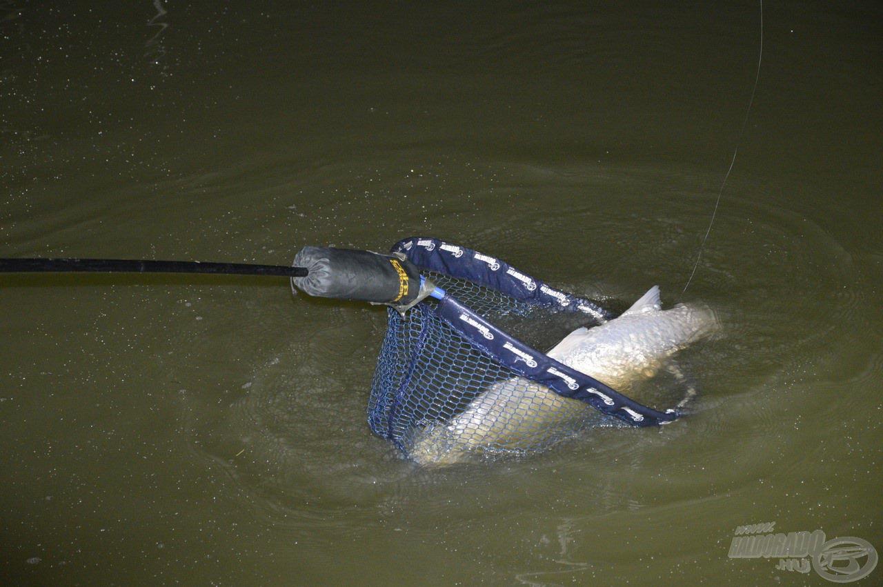 Hamarosan megérkezett az éjszaka első hala…