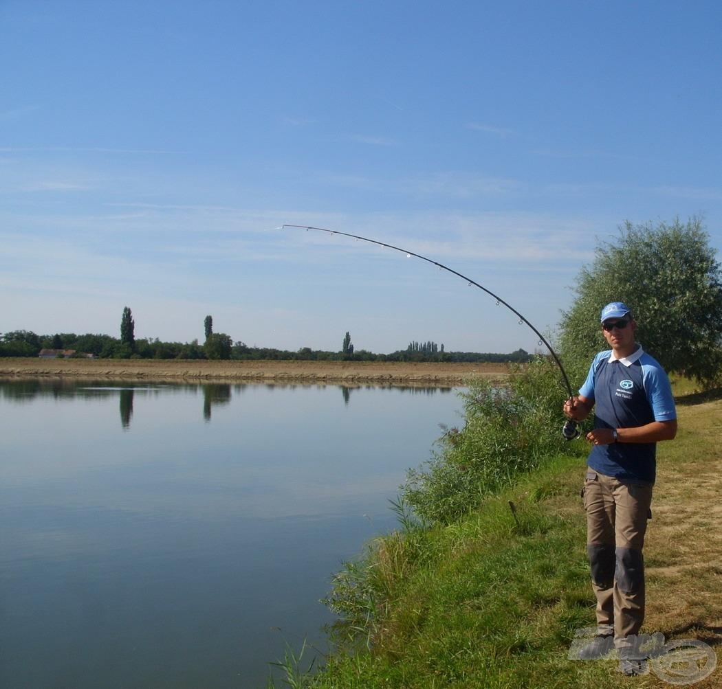 Nagy örömömre, a horgászat délutáni óráiban is folyamatosan érkeztek a pontykapások, görbülhettek feederbotjaim