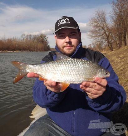 Feederbottal folyóvízen - Horgászat Csallóköz gyöngyszemén, a Kis-Dunán