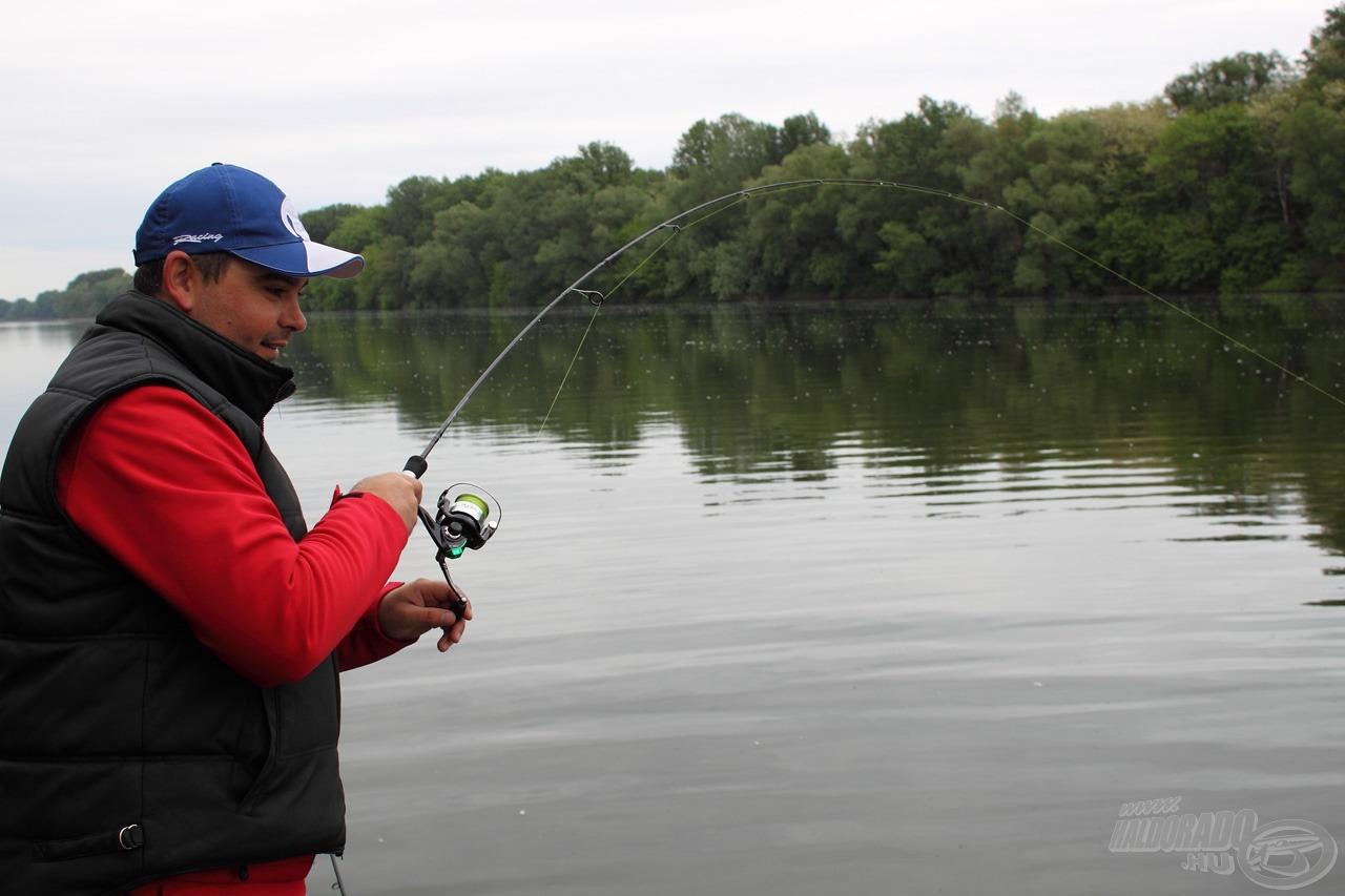 09:09:08 - hal jobbról nagy az öröm, mert a zsinór megúszta csigákat, ráadásul a hal is rohamosan megnőtt