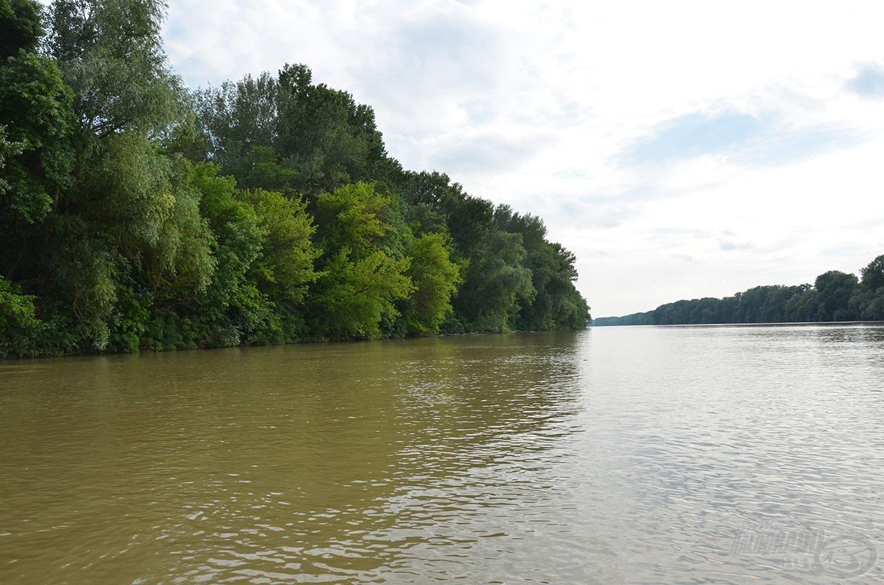 Az áradt víz meggátolta az eredményes balinozást