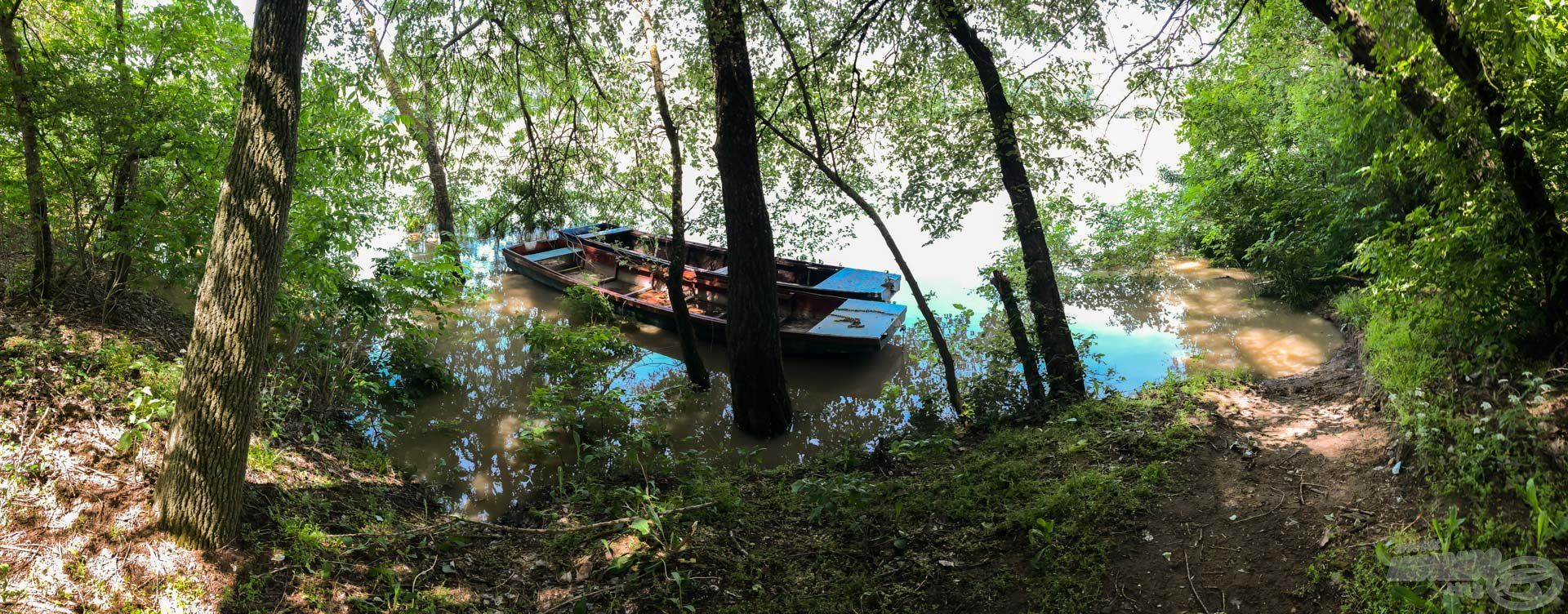 Hamar a fák között találta magát a csónakom