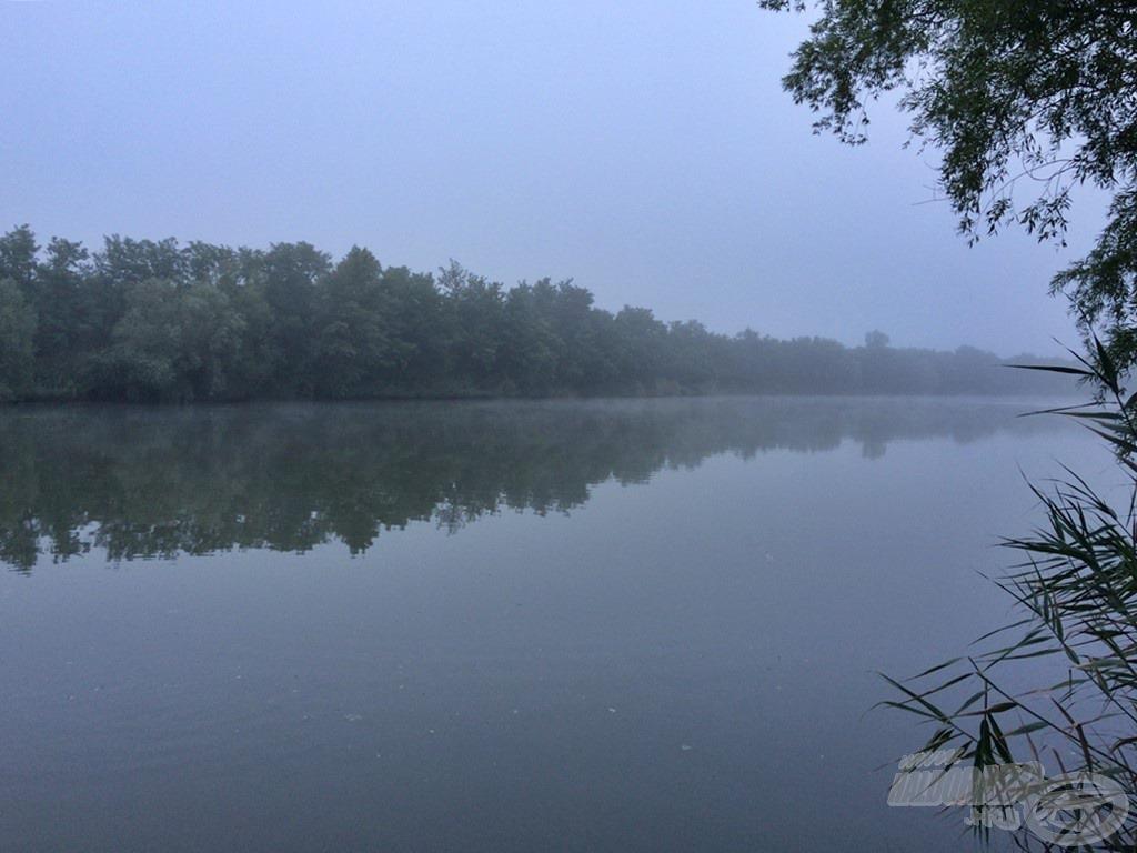Ködös, párás reggel köszöntött a mozgalmas éjszaka után. A víz ismét nyugodtabb arcát mutatta, a pontyfordulások, pontyra utaló jelek teljes mértékben eltűntek