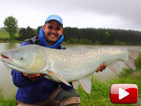 FermentX-szel nagy halakra
