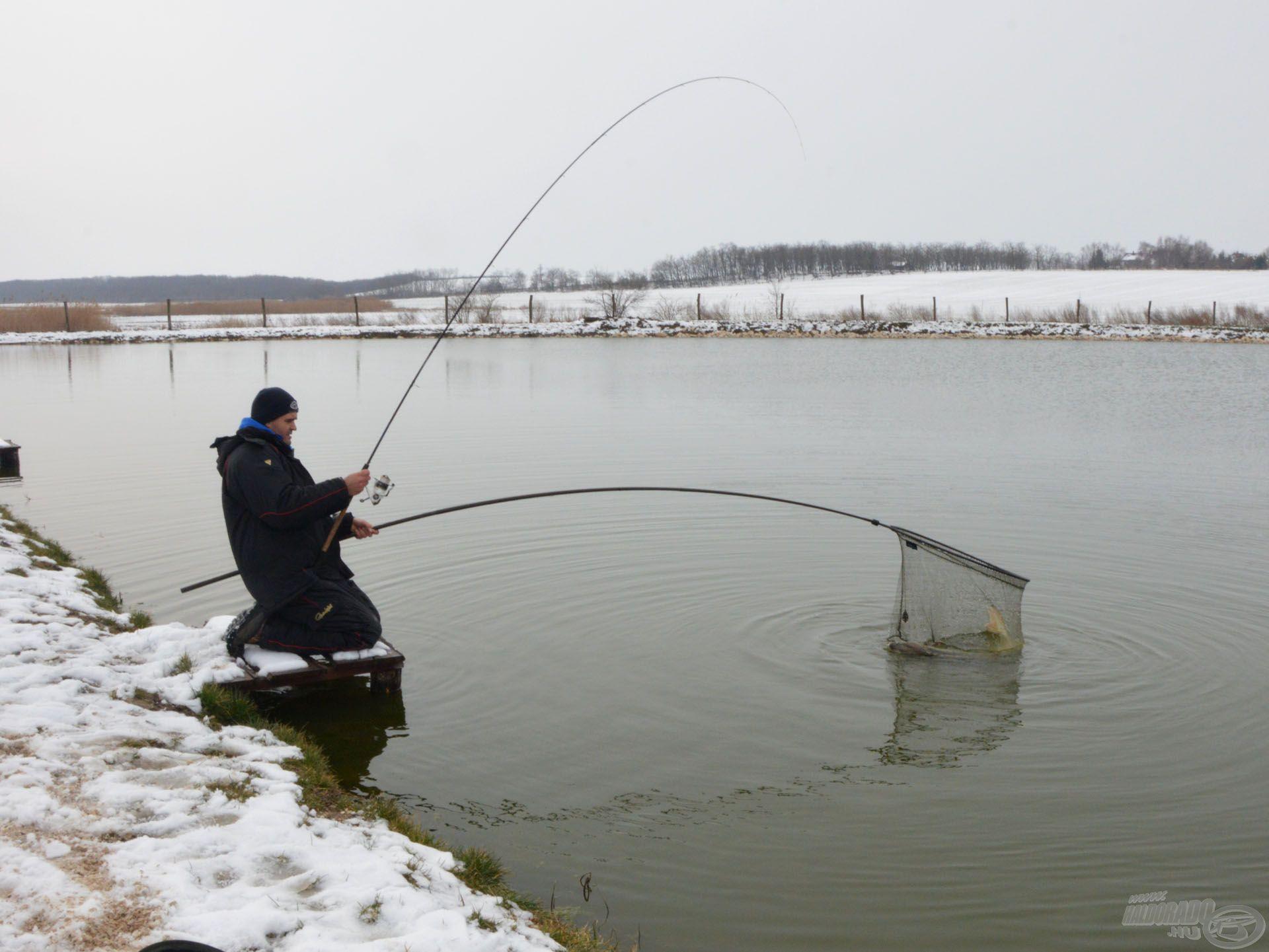 A By Döme TF Master Carp rakós merítő nyéllel és a Giant merítő fejjel akár egyedül is biztonságosan meg lehet meríteni a nagy halakat