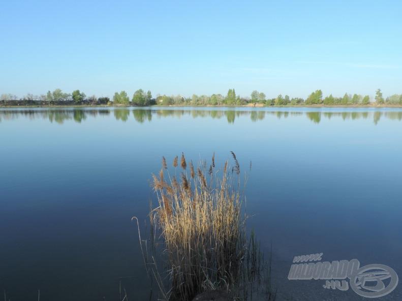 A felkelő nap sugarai világították meg a tó északi oldalán található kis nádast,a képen szemben található partra vettem az irányt