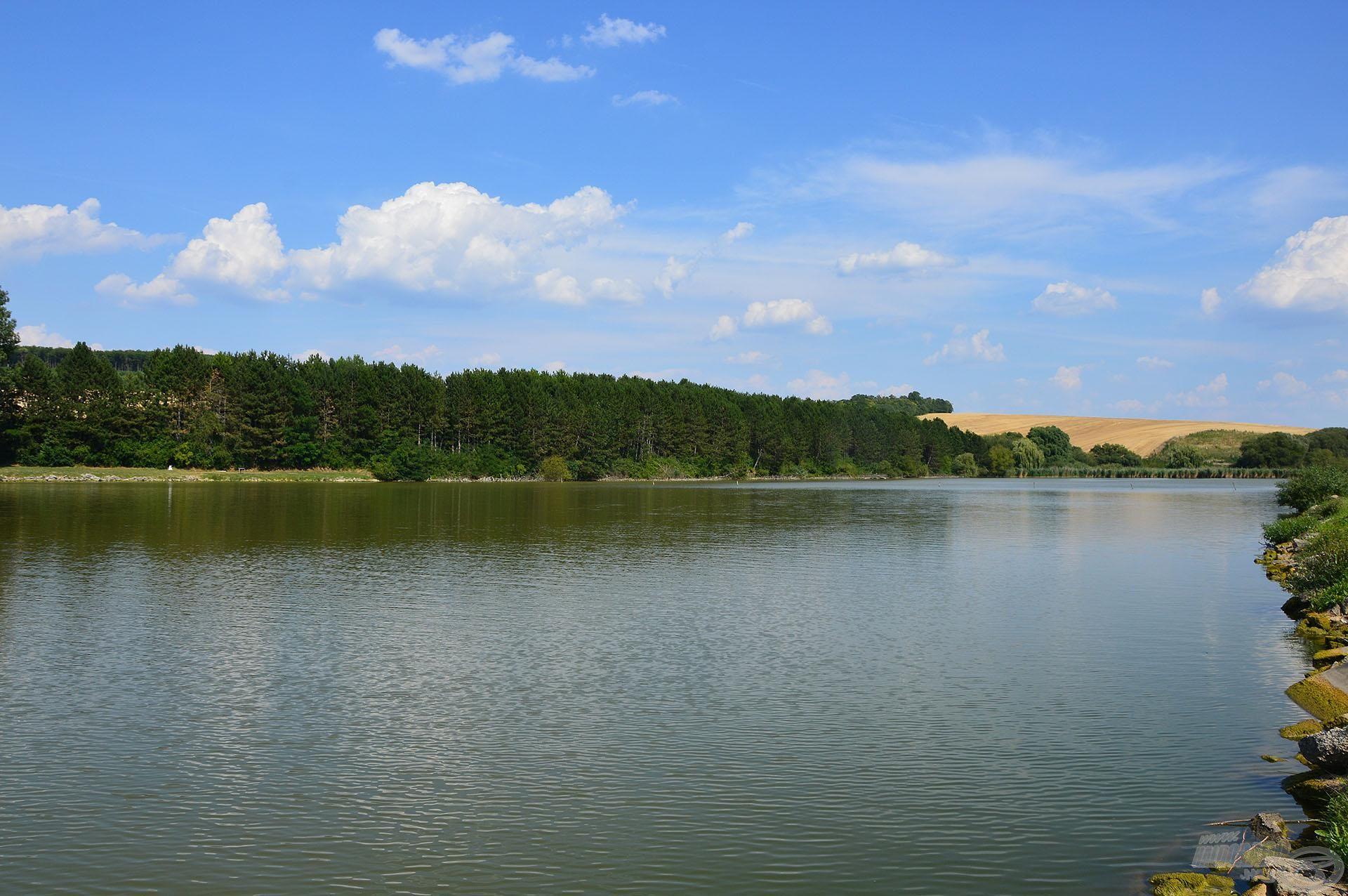 A Gyermelyi Horgásztó gyönyörű vízterület és nem utolsósorban kiváló lehetőségeket kínál az amurhorgászathoz