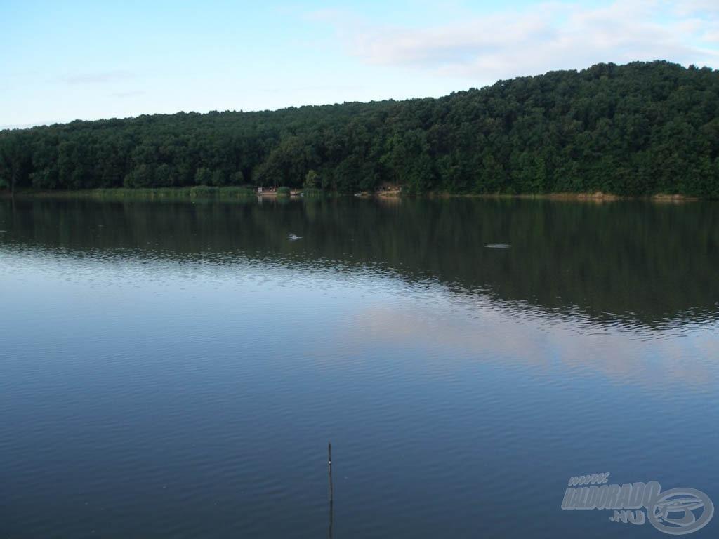 A Harsányi-tó kora reggel