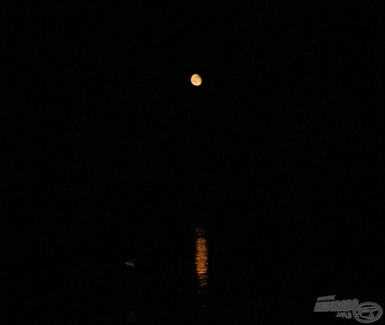 A fényes Hold nem a legjobb előjel wobbleres harcsázáskor