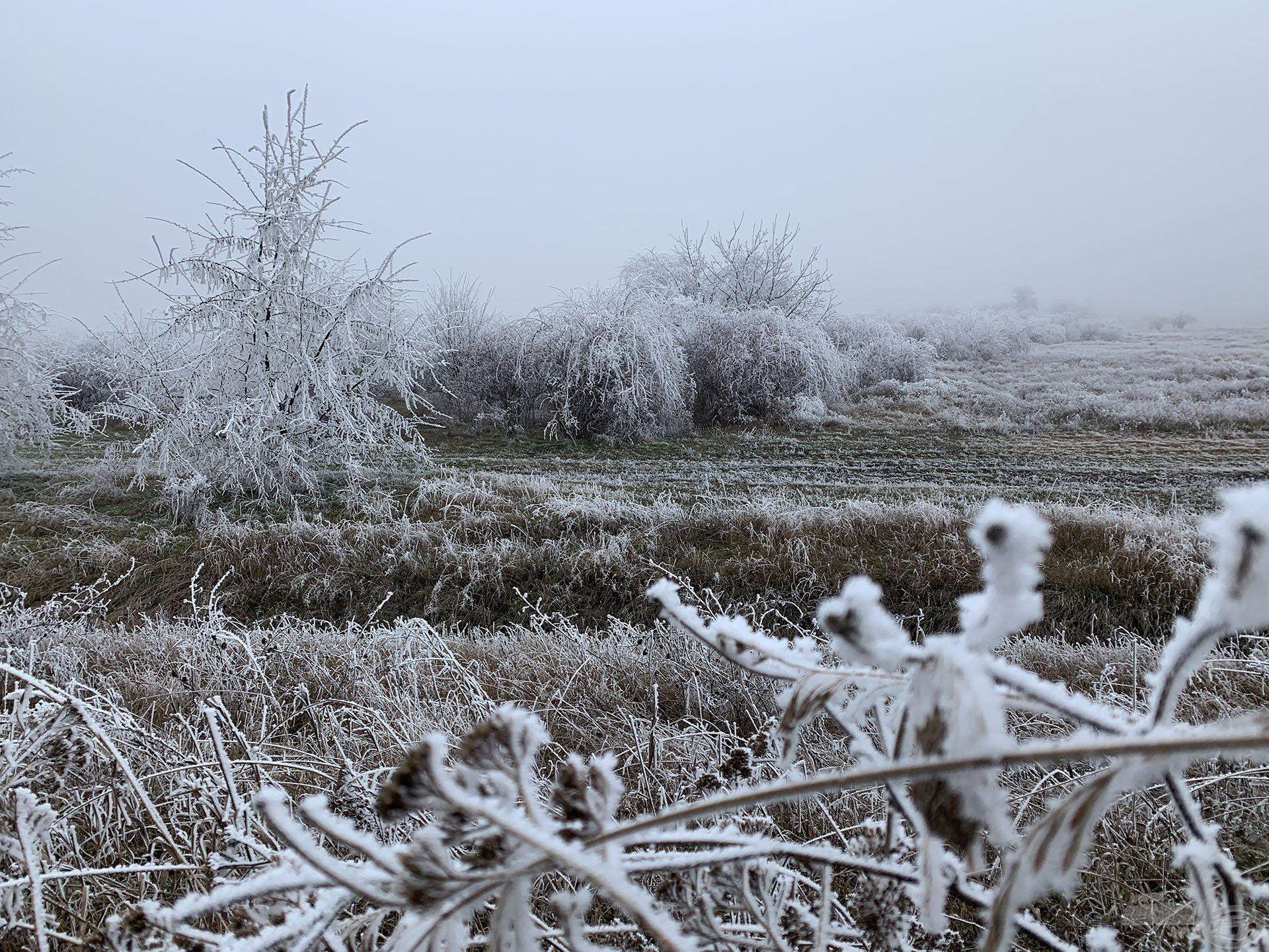 Január van, a tél közepén járunk
