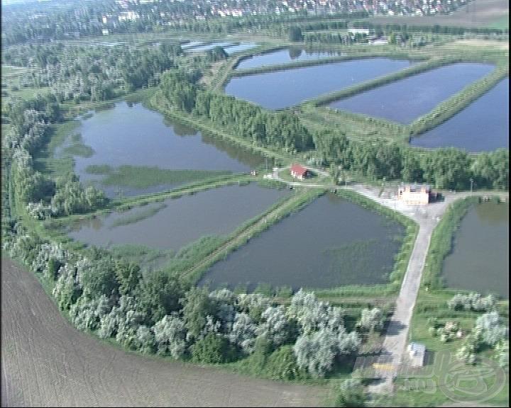 Ki hinné, hogy ilyen sok tó van a környéken?! (forrás: www.bentahorgaszpark.hu)