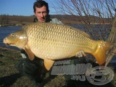 A legnagyobb miszlai ponty súlya 20,1 kg (forrás: www.miszlai-to.hu)