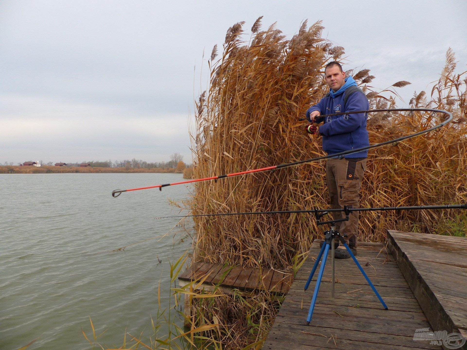 A jéghideg víz ellenére a nagytestű pontyok megdolgoztatják a horgászt és a felszerelést egyaránt