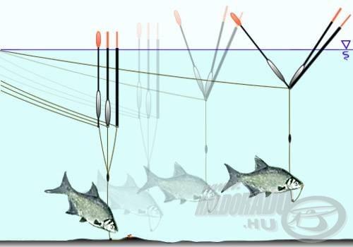 A vastag antennás vagy nagy bóbitát hordozó úszók sokszor korábban dőlnek, mint kéne. Ezeknél a jelzőólommal leterhelt antennahossz jelentős része nem feltolható, tehát nem is jelez
